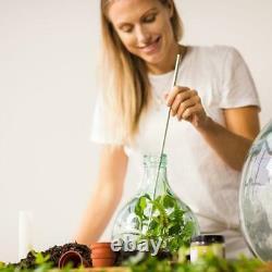 Esschert Garden Plant Verre Acier Cork Terrarium Outils De Bouteille Micro Système 55ltr